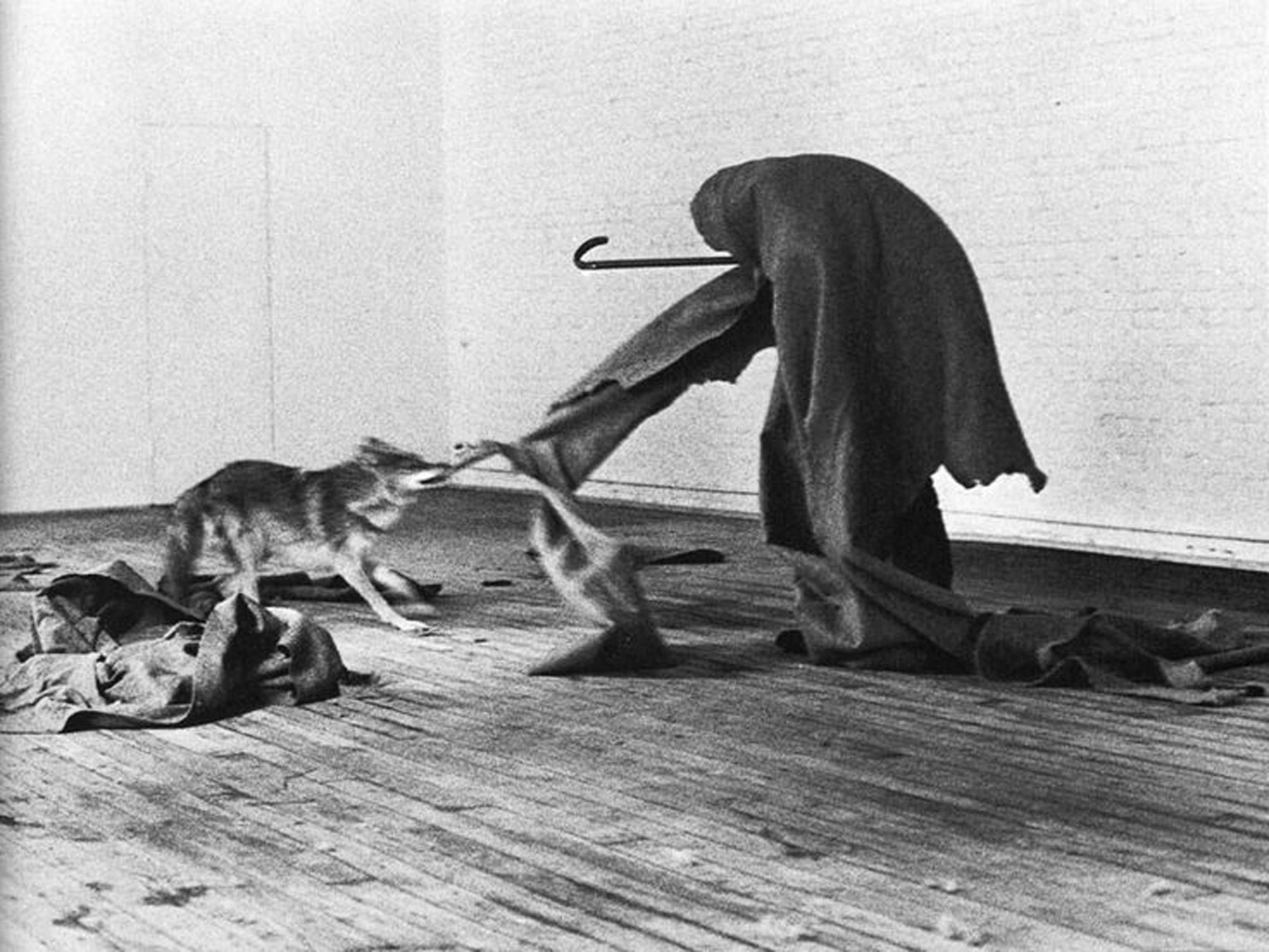 thumb-Joseph-Beuys-I-like-America-and-America-likes-me-.-1974--Joseph-Beuys-.-I-like-America-and-America-likes-me-.-1974.jpg